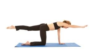 | Postura e Wellness |
